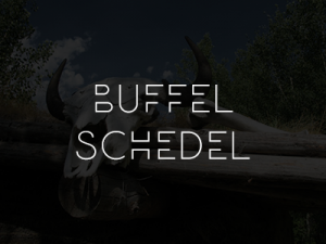 cat_buffel_schedel