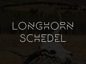 cat_longhorn_schedel