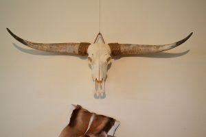Longhorn ongebleekt 3