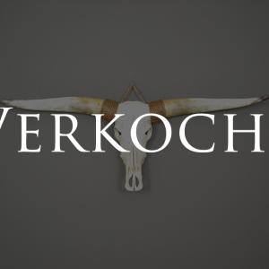 Longhorn schedel ongebleekt 2 verkocht