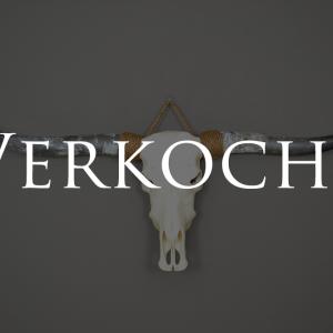 longhorn ongebleekt 3 verkocht