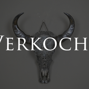 Gegraveerde buffel schedel verkocht