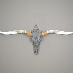 Gebleekte en gegraveerde longhorn schedel XL 4 staal